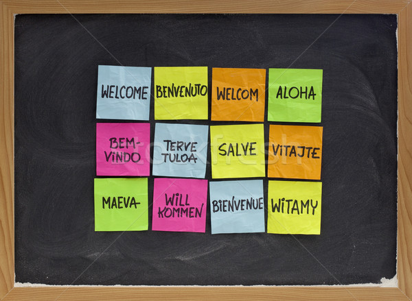 welcome in a dozen of languages Stock photo © PixelsAway