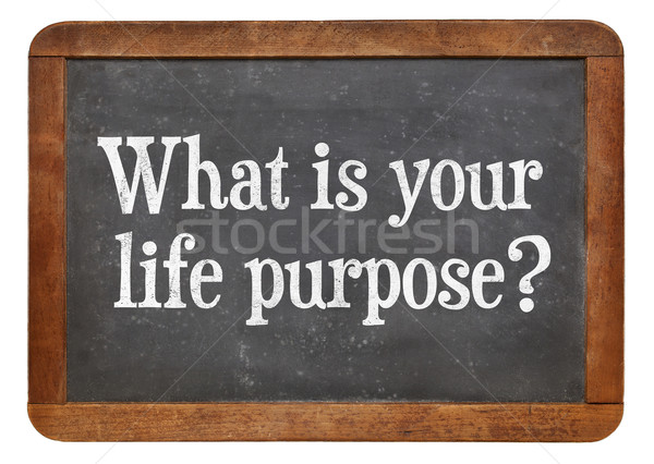 What is your life purpose ? Stock photo © PixelsAway