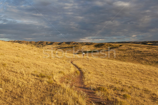 Nascer do sol Colorado pradaria mountain bike descobrir Foto stock © PixelsAway