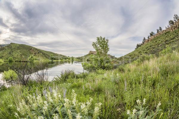 Stockfoto: Reservoir · groene · landschap · Colorado · fisheye