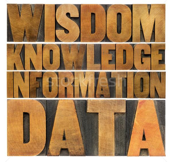 Datos información conocimiento sabiduría pirámide vintage Foto stock © PixelsAway