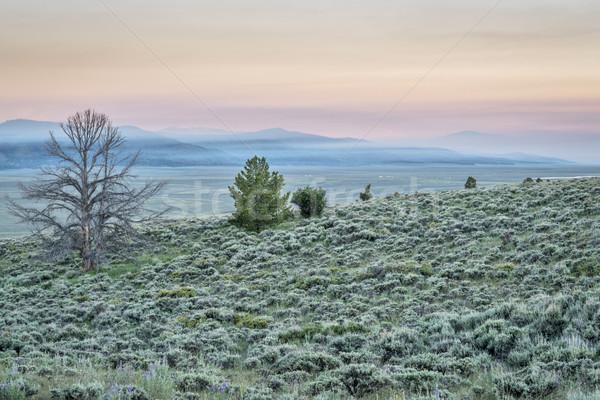 Wildfire dymu góry świcie pokryty na północ Zdjęcia stock © PixelsAway