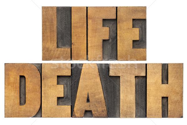 生活 死 木材 タイプ 孤立した 単語 ストックフォト © PixelsAway