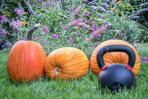 гири железной задний двор праздник Сток-фото © PixelsAway