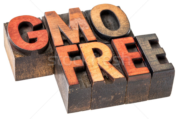 GMO free banner in wood type Stock photo © PixelsAway