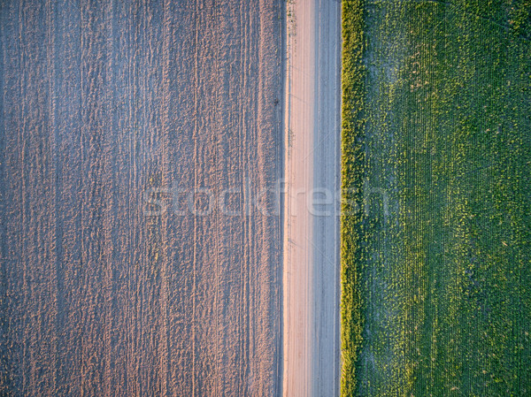dirt road, plowed field and meadow Stock photo © PixelsAway