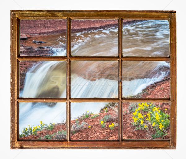 Vízesés vadvirágok ablak kilátás patak klasszikus Stock fotó © PixelsAway