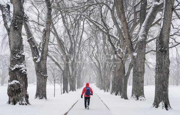 Solitário masculino descobrir nevasca caminhada beco Foto stock © PixelsAway