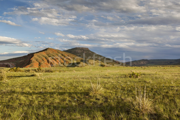 Montagne ranch paysage Colorado rouge ouvrir Photo stock © PixelsAway