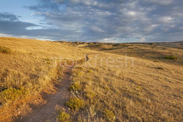 Trilha Colorado pradaria nascer do sol montanhas naturalismo Foto stock © PixelsAway
