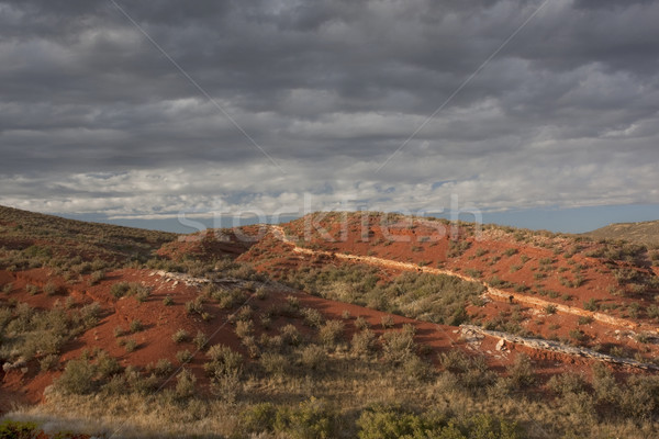 desert hilly landscape under stormy sky Stock photo © PixelsAway
