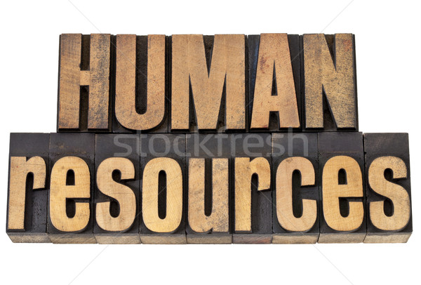 Humanismo recursos madeira tipo isolado Foto stock © PixelsAway