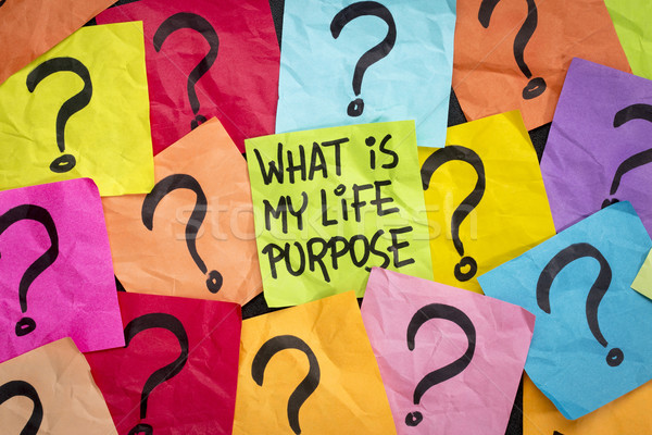 life meaning concept and purpose Stock photo © PixelsAway