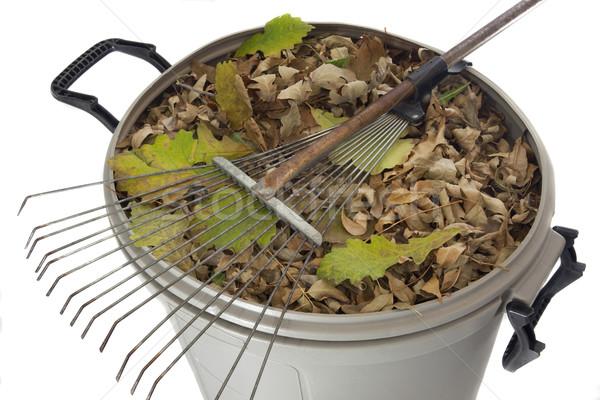 грабли высушите листьев мусора старые Сток-фото © PixelsAway