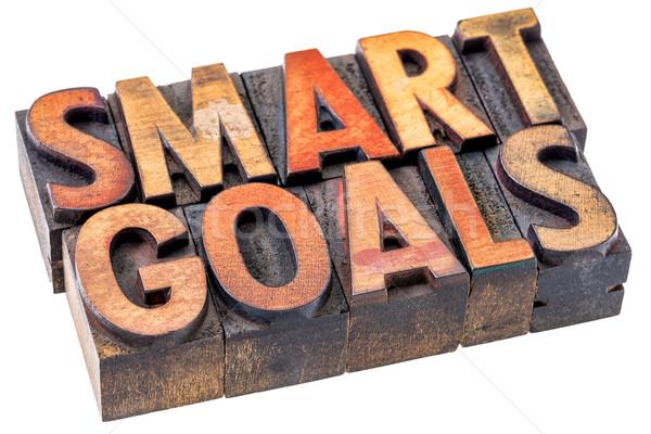 smart goals in vintage wood type Stock photo © PixelsAway