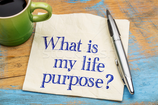 What is my life purpose? Stock photo © PixelsAway