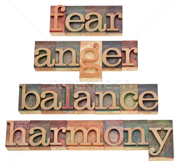 Paura rabbia equilibrio armonia sentimenti mente Foto d'archivio © PixelsAway