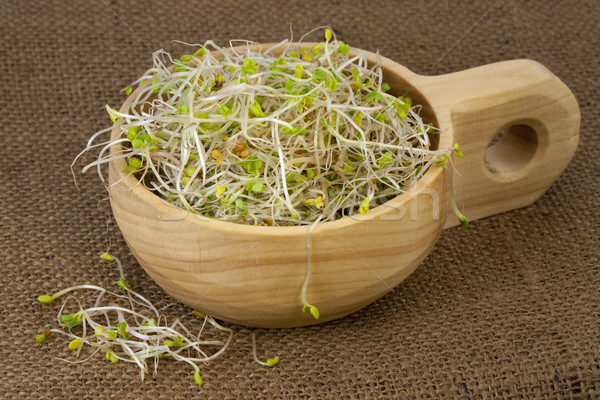 broccoli, radish and clover sprouts in a wooden bowl Stock photo © PixelsAway