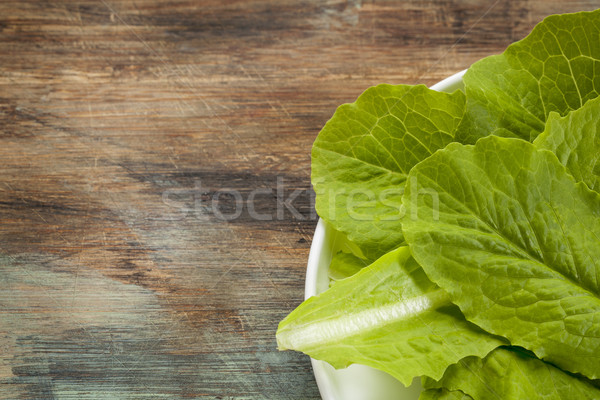romaine or cos lettuce Stock photo © PixelsAway