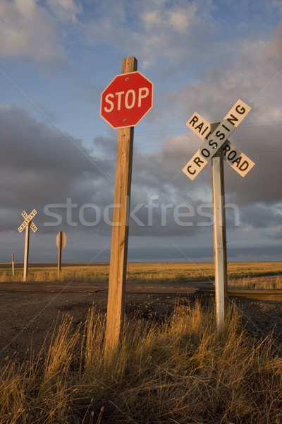 rural railroad crossing witrh a stop sign Stock photo © PixelsAway