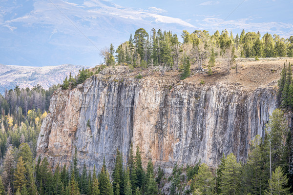 sandstone cliff and spruce in Colorado Stock photo © PixelsAway