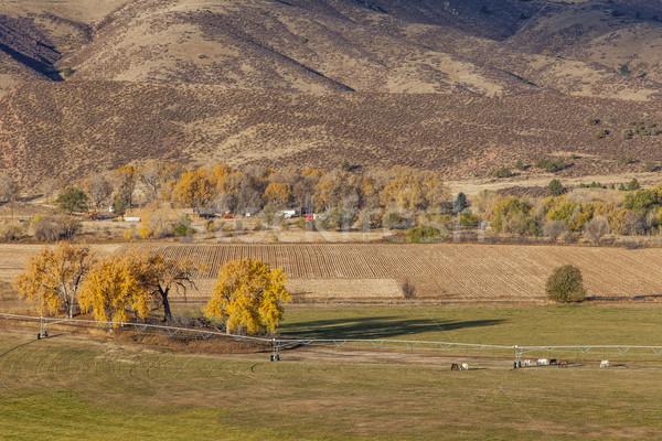 farmland at Colorado foothills Stock photo © PixelsAway