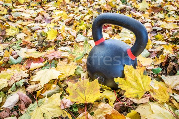 exercise kettlebell in maple leaves Stock photo © PixelsAway
