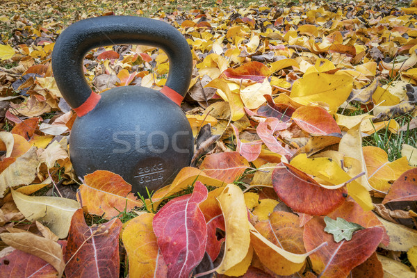 kettlebell with fall color  leaves Stock photo © PixelsAway