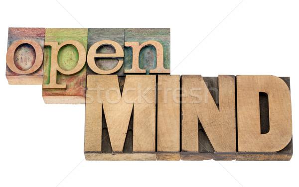 Open mente legno tipo isolato parole Foto d'archivio © PixelsAway