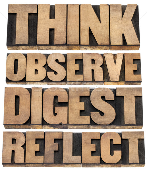 think, observe, digest, reflect Stock photo © PixelsAway