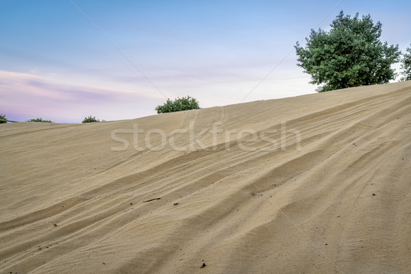 off road vehicle tracks on sand dune Stock photo © PixelsAway