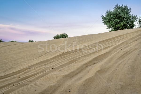 Carretera vehículo duna norte arena Foto stock © PixelsAway