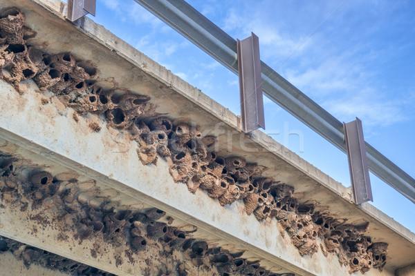 懸崖 泥 具體 高速公路 橋 道路 商業照片 © PixelsAway