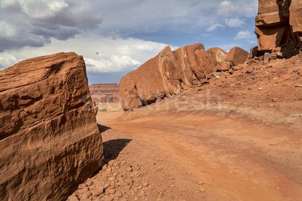 Sivatag út nyom tyúk sarok utazás Stock fotó © PixelsAway