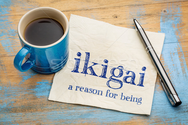 ikigai - a reason for being Stock photo © PixelsAway