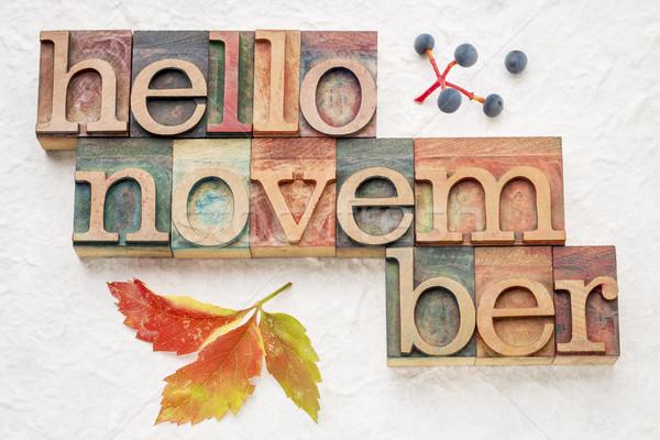 Hello November word abstrtact in wood type Stock photo © PixelsAway