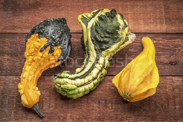 ornamental gourds abstract Stock photo © PixelsAway