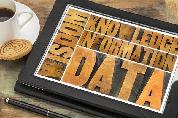 Datos información conocimiento sabiduría palabra resumen Foto stock © PixelsAway