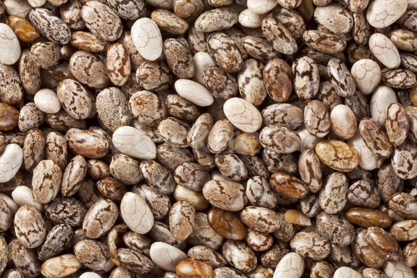 chia seeds at 2x life-size magnification Stock photo © PixelsAway