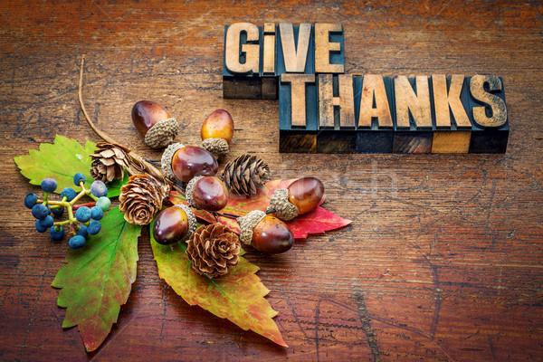 Ad köszönet hálaadás szöveg magasnyomás fa Stock fotó © PixelsAway