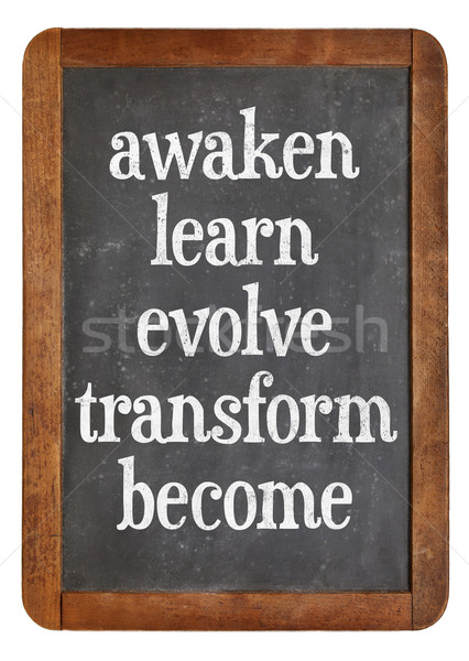 awaken, learn, evolve on blackboard Stock photo © PixelsAway