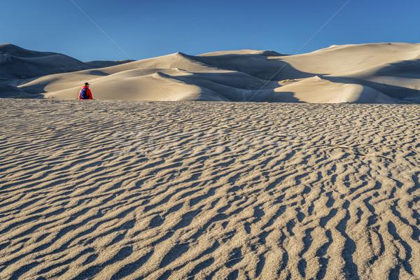 Elveszett tenger homok magányos természetjáró nagyszerű Stock fotó © PixelsAway