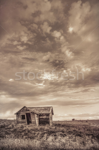 old abandoned farm house on Colorado prairie Stock photo © PixelsAway