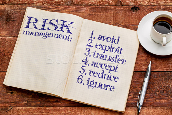risk management strategies Stock photo © PixelsAway