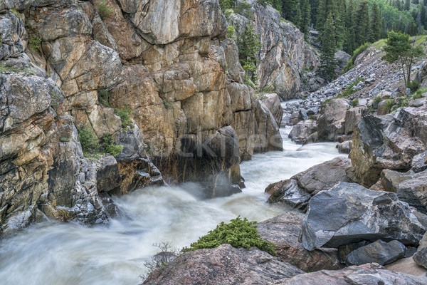 Poudre Falls at high water Stock photo © PixelsAway