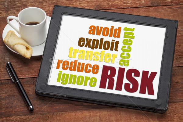 risk management strategies Stock photo © PixelsAway