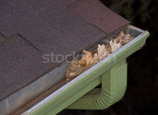 gutter blocked by dry leaves Stock photo © PixelsAway
