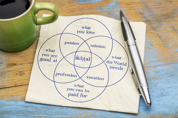 ikigai concept- a reason for being Stock photo © PixelsAway