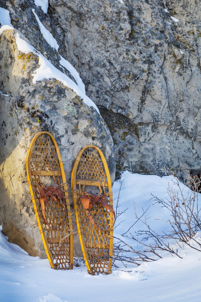 Tenha pata vintage Colorado inverno Foto stock © PixelsAway