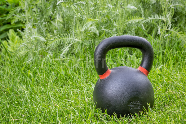 heavy competition  kettlebell in backyard Stock photo © PixelsAway